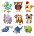 Animals set color vector image