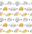 cute seamless pattern adorable dog vector image vector image