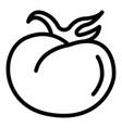 Food tomato icon outline style