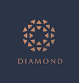 logo concept for luxury business vector image