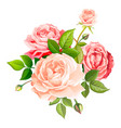 lovely rose flower vector image vector image