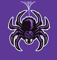 mascot spider hanging on the spider web vector image vector image