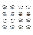 Set of female eyes and brows image vector image vector image