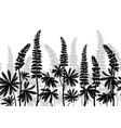 lupine plants seamless vector image vector image