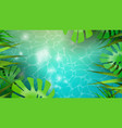summer background template tropical plants vector image vector image
