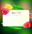 beautiful rectangular greating card with spring vector image vector image