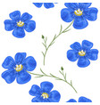 flax blue flowers with stem seamless pattern vector image vector image