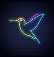 hummingbird neon logo design colibri bird neon vector image