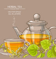linden tea background vector image vector image
