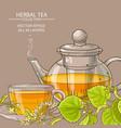linden tea background vector image