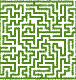 Maze from leaves vector image vector image