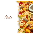 Nuts Mix Background vector image vector image