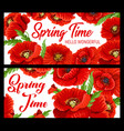spring time poppy flowers floral petals banners vector image vector image