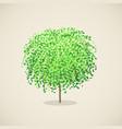 stylized tree with green leaves vector image vector image