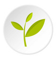 tea plant icon circle vector image vector image
