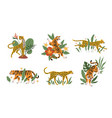 tropical leaves with tigers leopards and jaguars vector image vector image