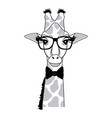 giraffe hipster animal wearing glasses fashion vector image vector image