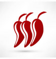 icon of red hot chili pepper vector image vector image