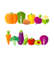Organic farm vegetables in flat style vector image vector image