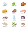 Protein food icons collection for healthy diet vector image vector image