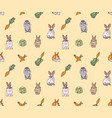 rabbits pets animal cabbage and carrots seamless vector image