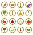Vegetables studio set cartoon style vector image vector image