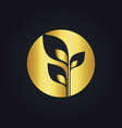 plant leaf gold tree ecology round logo vector image