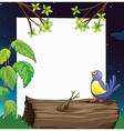 A bird and a white board vector image vector image