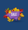 autumn sale geometric label with leaves vector image vector image