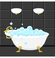 Bath tub sanitary engineering in flat syle vector image vector image