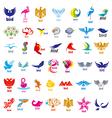 biggest collection logos birds vector image