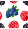 blackberry blueberry and raspberry seamless vector image