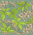 elderflower pattern vector image vector image