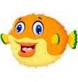 funny puffer fish cartoon swimming vector image