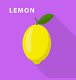 lemon icon flat style vector image vector image