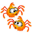 set of funny laughing orange furry spider isolated vector image vector image