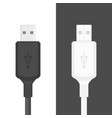 usb cable flat style vector image vector image
