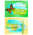 best spring sale 70 off discount promo price 30 vector image vector image