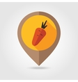 Carrot flat mapping pin icon vector image vector image