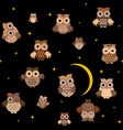 cartoon owls in night vector image vector image