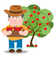 farmer collects the harvest of apples farming vector image