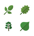 flat icon natural set of alder foliage hickory vector image vector image
