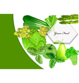 green food vector image