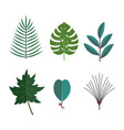 green tropical leaves floral icons set autumn vector image vector image