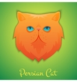 Persian cat vector image vector image