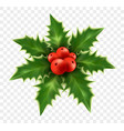 realistic christmas holly isolated on background vector image vector image