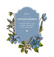 badge design with colored edelweiss meadow vector image vector image