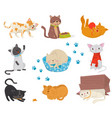 flat set with funny cats cartoon vector image