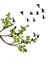 flock flying birds on tree branch vector image vector image