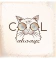 Funny muzzle cat in sunglasses closeup vector image